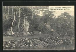 AK Nouvelle-Calédonie, Paysage Sur La Route De Yate - Postkaarten