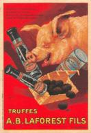 Truffes Truffe Cochon Laforest Périgueux Illustrateur Auzonne - Publicité