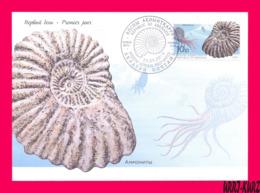 ABKHAZIA 2019 Fauna Marine Shell Fossils Extinct Cephalopods Ammonites Archaeology FDC - Fossils