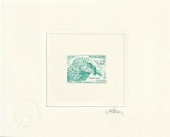 Monaco épreuve D'artiste Signé Par Le Graveur Du 1849 Rapace Le Gypete Barbu - Monaco