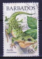 Barbados Single 65c Stamp From The 1988 Lizards Of Barbados Series. - Barbados (1966-...)