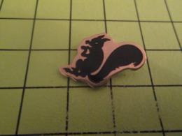 411a Pin's Pins / Beau Et Rare / THEME : ANIMAUX / ECUREUIL NOIR - Animals