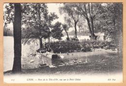 CPA Lyon, Parc De La Tete D'Or, Vue Sur Le Petit Chalet, Gel. - Lyon