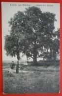 ALBANIA , KUJTIM NGA SHKODRA - CINARI ZEF ZORBES - K.U.K. FELDPOST 300 - Albania