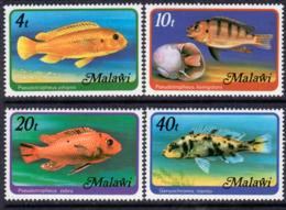Malawi 1977 Fish Of Lake Malawi, With Watermark ( Perf. 13 Ex MS) Set Of 4, MNH, SG 556B (BA2) - Malawi (1964-...)
