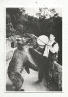 Cp, Métier, MONTREUR D'OURS ,Dimitri Dernier Montreur D'ours , Dans Les Pyrénées ,vierge,n° 319 SUR 500 EX. - Berufe