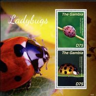 GAMBIE Bloc Coccinelles II (1425)  Neuf ** MNH - Gambie (1965-...)