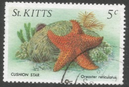 St Kitts. 1984 Marine Life. 5c Used. SG 143 - St.Kitts And Nevis ( 1983-...)