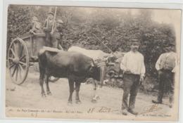 CPA  23 BENEVENT AU PAYS CREUSOIS  BENEVENT LE 28 AOUT 1904  + CACHET POSTE AU DOS BEAU PLAN - Benevent L'Abbaye