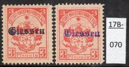 Germany Deutschland Privatpost Local Post Stadtpost :  Giessen Mi. 1a And 1b MH (2). - Privé