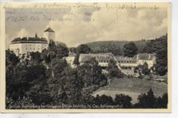 AK 0330  Schloss Kranichberg Bei Gloggnitz Mit Schlossgasthof / Verlag Ledermann Um 1950 - Semmering