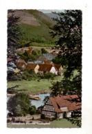 3417 BODENFELDE - WAHMBECK, Ortsansicht Mit Weserfähre, 1962 - Northeim