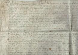 1579 - Très Grand Parchemin Manuscrit Sur Peau - 52 X 50 Cm - Manuscrits