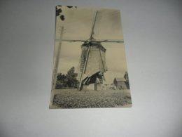 Meerhout Zittaart  Molen Fotokaart - Meerhout