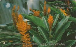 PHONE CARD-JAMAICA (E48.22.1 - Giamaica