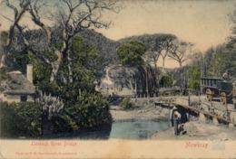 1905 SUDAFRICA , TARJETA POSTAL CIRCULADA , LIESBECK RIVER BRIDGE - MOWBRAY - Sudáfrica