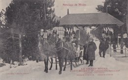 Le Grand Hotel Font Romeu Attelage Mules - France