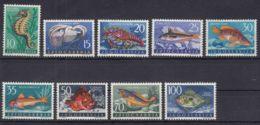 Yugoslavia Republic Sea Fish 1956 Mi#795-803 Mint Hinged - 1945-1992 République Fédérative Populaire De Yougoslavie