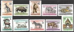 Hungary  1961     Sc#1346-55 Wildlife Set MNH   2016 Scott Value $5.05 - Hungría