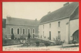 909 - BELGIQUE -   BRUGELEITE - Etablissement De La Miséricorde - Brugelette