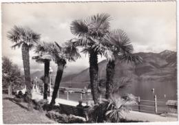 Locarno, Lago Maggiore - TI Ticino