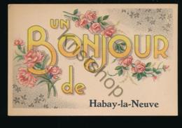 Habay-la-Neuve [AA31 6.299 - Non Classés