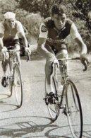 7176 Photo Repro. Cyclisme Foucher, Samyn - Cyclisme