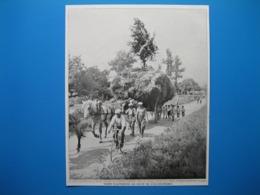 (1932) Le RETOUR A LA FERME Avec La Dernière Charrette De La Moisson Surmontée D'un Arbuste Enrubanné - Vieux Papiers