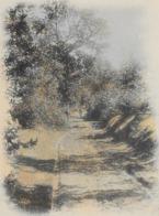 1 Ansichtkaart 1901 - Genk - Genck - Allée Des Chênes - Hotel De La Cloche - Genk