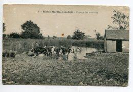 41 ST SAINT MARTIN Des BOIS Vaches Et Miutons Fermiere Paysage Des Environs  écrite     D14 2019 - France