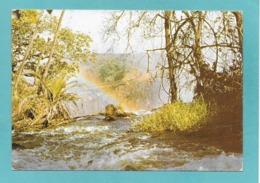 ZAMBIA 1981 - Zambia