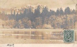Canada - N°61461 - Mt Arrowamith ... Alberni ... - Carte Photo - Autres