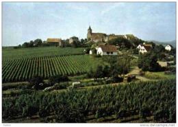 Carte Postale 68. Zellenberg  Trés  Beau Plan - Non Classés