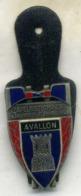 Insigne Sapeur Pompier, 89 AVALLON___delsart - Firemen