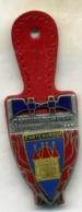 Insigne Sapeur Pompier, 36 CHATEAUROUX___drago - Firemen