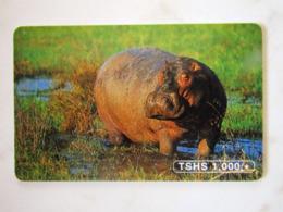 ANIMAL TANZANIA  HIPPOPOTAME - Tanzanie