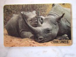 ANIMAL TANZANIA  RHINOCEROS - Tanzanie
