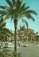 Palma De Mallorca (Baleares, Spagna) Paseo De Sagrera Y La Catedral, The Cathedral, La Cathedrale - Palma De Mallorca