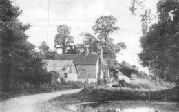 HEADLEY - SLOUGH LANE C1910 ~ A PASTIME'S POSTCARD #97101 - Surrey