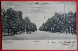ROMANIA - BUCURESTI , SOSEAUA - Rumänien