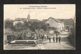 70 - NOIDANS - Les Environs De Vesoul - Quartier De La Citadelle ,#70/043 - France