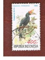 INDONESIA   - SG 2055  -  1992  BIRDS: RHINOCEROS HORNBILL  - USED ° - Indonesia