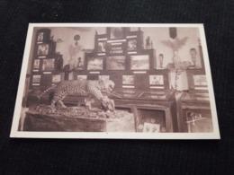 Ancienne Carte Postale Cpsm Abbaye Notre Dame De Langonnet Musée Des Missions Afrique - Autres Communes