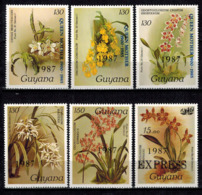 MBP-BK2-019-2 MINT ¤ GUYANA 6w MINT OUT OF SET- MINT ¤ FLOWERS OF THE WORLD - ORCHIDEE - FLEURS BLÜMEN - Orchids