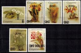 MBP-BK2-0026-3 MINT ¤ GUYANA 6w MINT OUT OF SET- MINT ¤ FLOWERS OF THE WORLD - ORCHIDEE - FLEURS BLÜMEN - Orchids