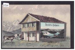 RHEINFALL BEI NEUHAUSEN - B ( PETIT PLI D'ANGLE ) - SH Schaffhouse