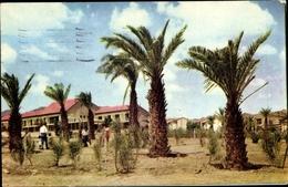 Cp Elath Israel, Shelomi Hotel - Israel