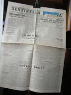 (G35) SENTINELLA D' ITALIA, ANNO IX N° 48 25/26 FEBBRAIO 1938, QUOTIDIANO DEL PARTITO NAZIONALE FASCISTA - Riviste & Giornali