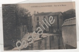 66 PYRENEES ORIENTALES - CP ANIMEE CORNEILLA DE LA RIVIERE - RUE DE LA MAIRIE - EDIT. NAVARRO - Other Municipalities