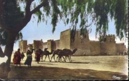 Une Citadelle - Formato Piccolo Viaggiata – E 13 - Cartoline